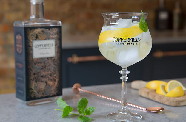 Copperfield London Dry Gin Volume One Perfect Serve
